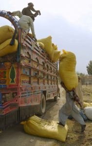 Locals load bags of peanuts onto trucks A local cr